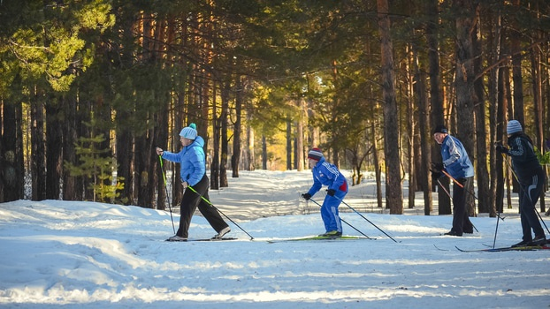4 people skiing past a section of forest